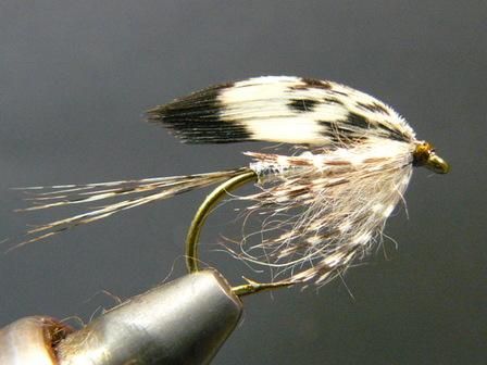 P1110061
